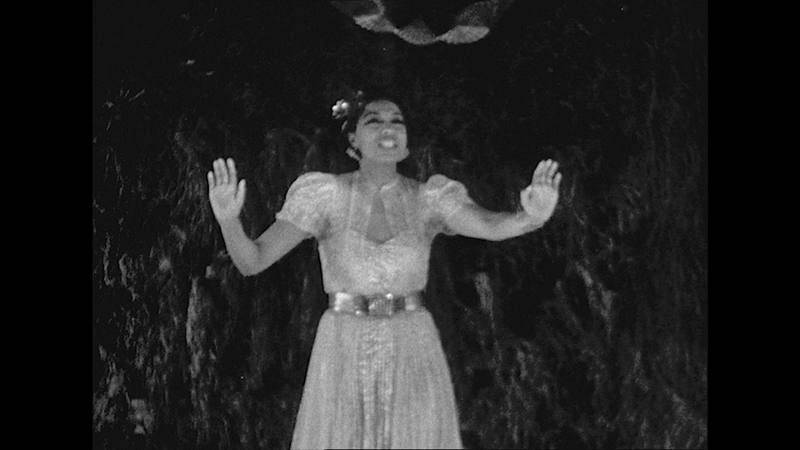 'Josephine Baker: La historia de un despertar'