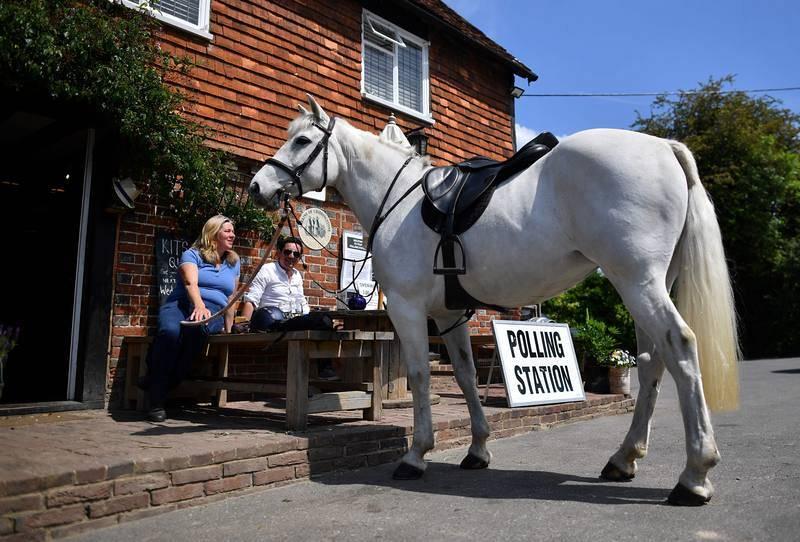 ...A un caballo