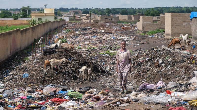 Animales y cabras conviven entre la basura en el campo de desplazados de Faladie, en Bamako (Mali)
