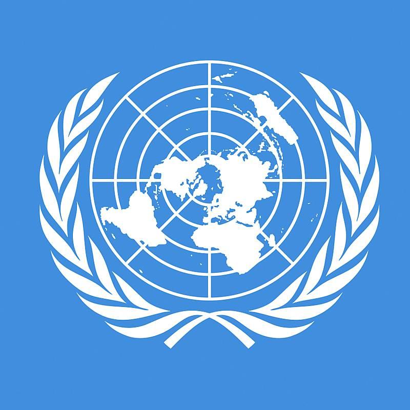 Presta especial atención a los contenidos marcados como prioritarios por la ONU