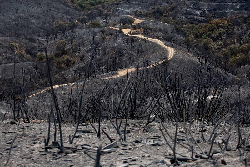 El avance sin control del incendio sigue dejando imágenes desoladoras a su paso y está obligando a que cada vez más personas tengan que ser desalojadas de sus casas ante el peligro de que se vean afectadas por las llamas
