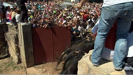 En Soria, doce toros se abren paso entre 30.000 personas y ni una sola valla