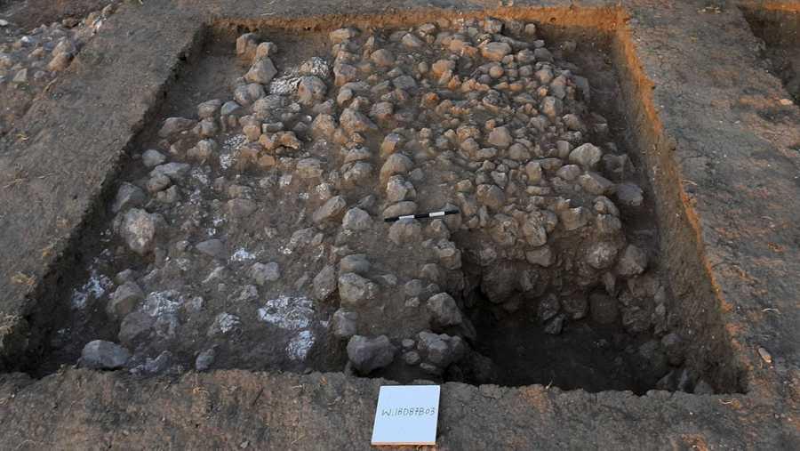 Imagen de los hallazgos en el yacimiento de Tel Zalfit