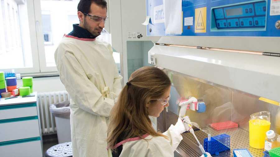 La OMS anunció este verano que los ensayos clínicos de una nueva vacuna contra el virus del ébola con una efectividad del 100%.