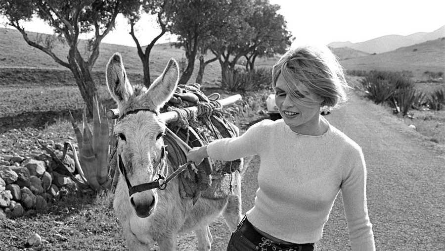 Brigitte Bardot por César Lucas