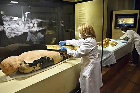 El estudio ha generado imágenes de los cuerpos y detalles inéditos