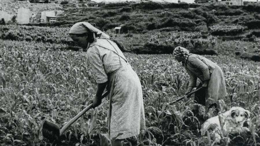 Naciones Unidas reconoce desde 2008 el trabajo de la mujer rural dedicándole un día en el calendario (15 de octubre)