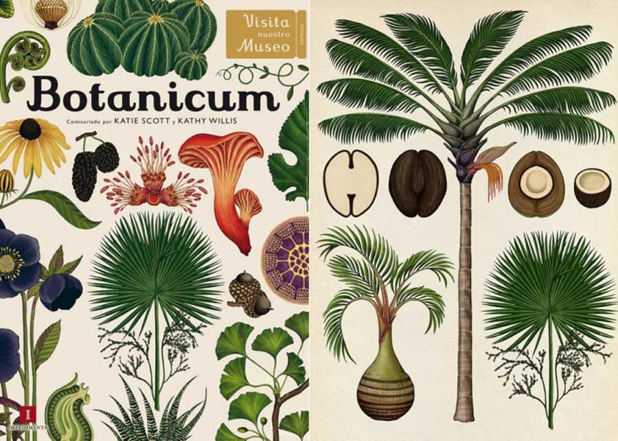 Portada y página de 'Botanicum'