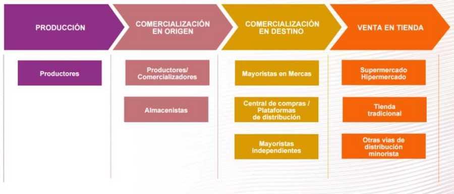 Estructura general de las cadenas de valor según el Observatorio de Precios de los Alimentos.