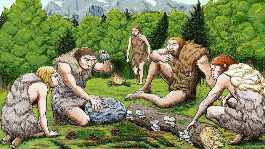 Cinco neandertales de El Sidrón degustan setas, piñones y musgo. Abel Grau / CSIC Comunicación