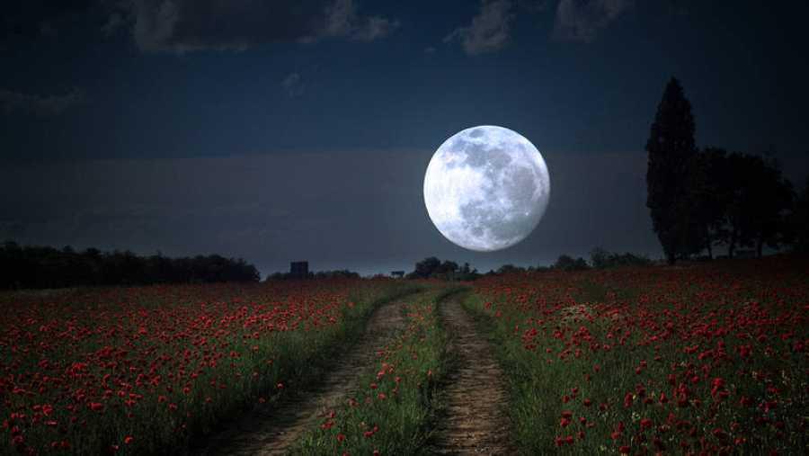 La Luna llena de mayo es conocida popularmente como la