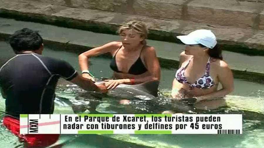 Programa de 'Madrileños por el mundo'