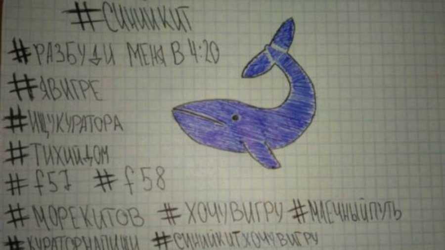 La ballena azul, un