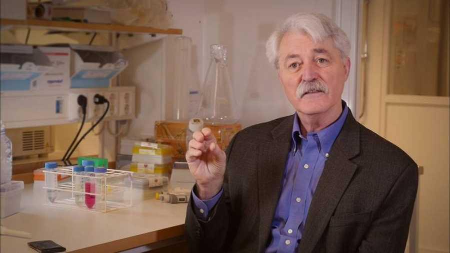 El científico endocrino, Thomas Zoeller