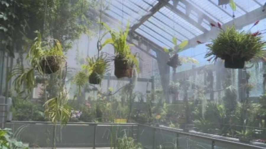 Invernadero del Real Jardín Botánico de Madrid