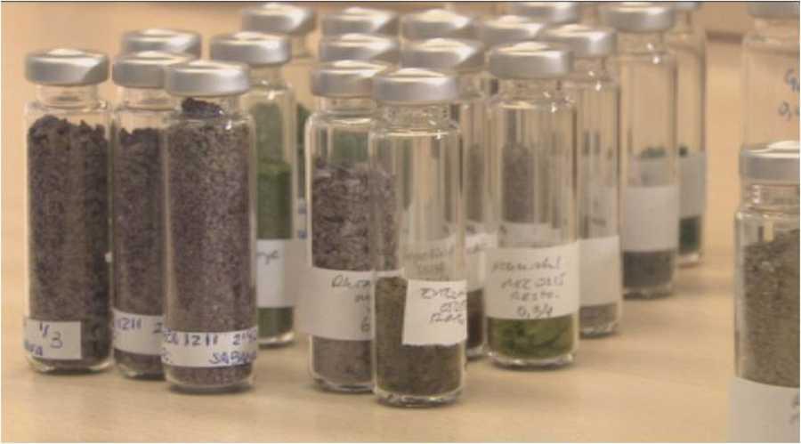 Descubriremos el trabajo científico del Banco Español de Algas.