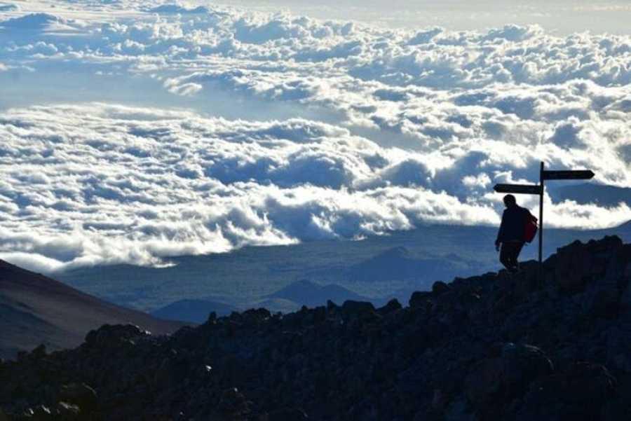 ¡Qué animal! recorre la isla de Tenerife para desvelar los secretos de su fauna