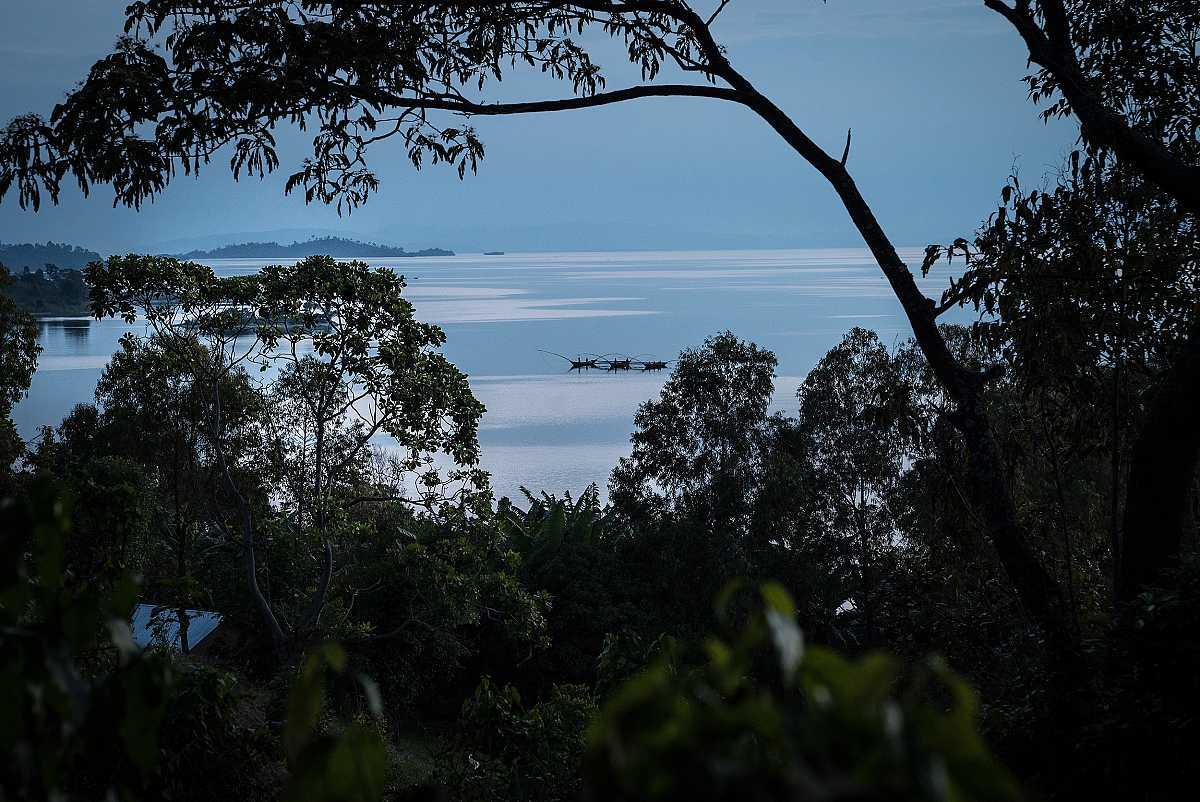Barcas de pesca en el lago Kivu, vistas a través de un hueco entre los árboles de la selva que lo rodea.