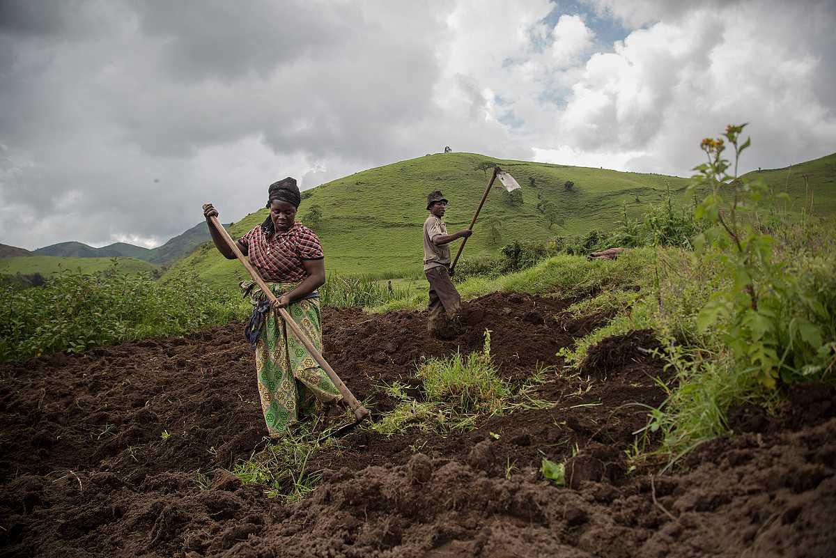 Un hombre y una mujer trabajan la tierra con unos azadones.