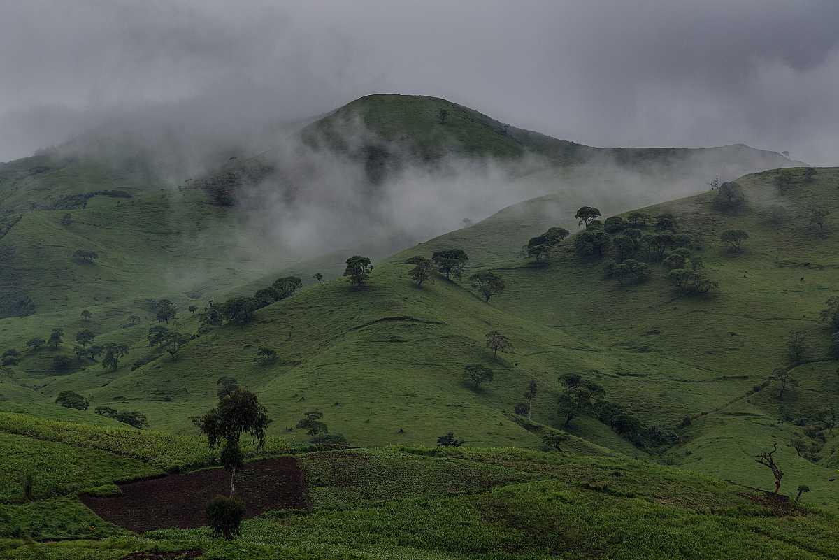 Paisaje de verdes colinas con jirones de niebla y un cielo cubierto.