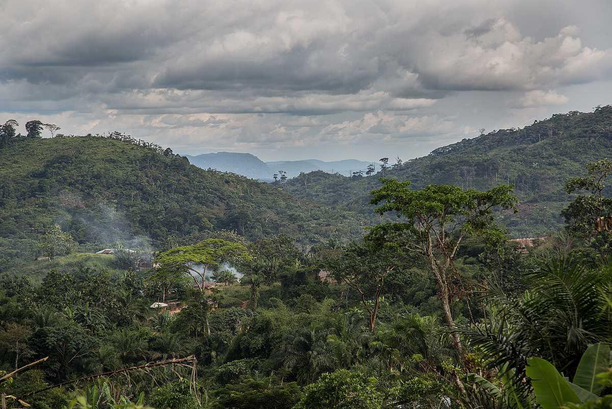 Un poblado se adivina rodeado por la espesa selva. El humo de los hogares de Lulingu delata su presencia.