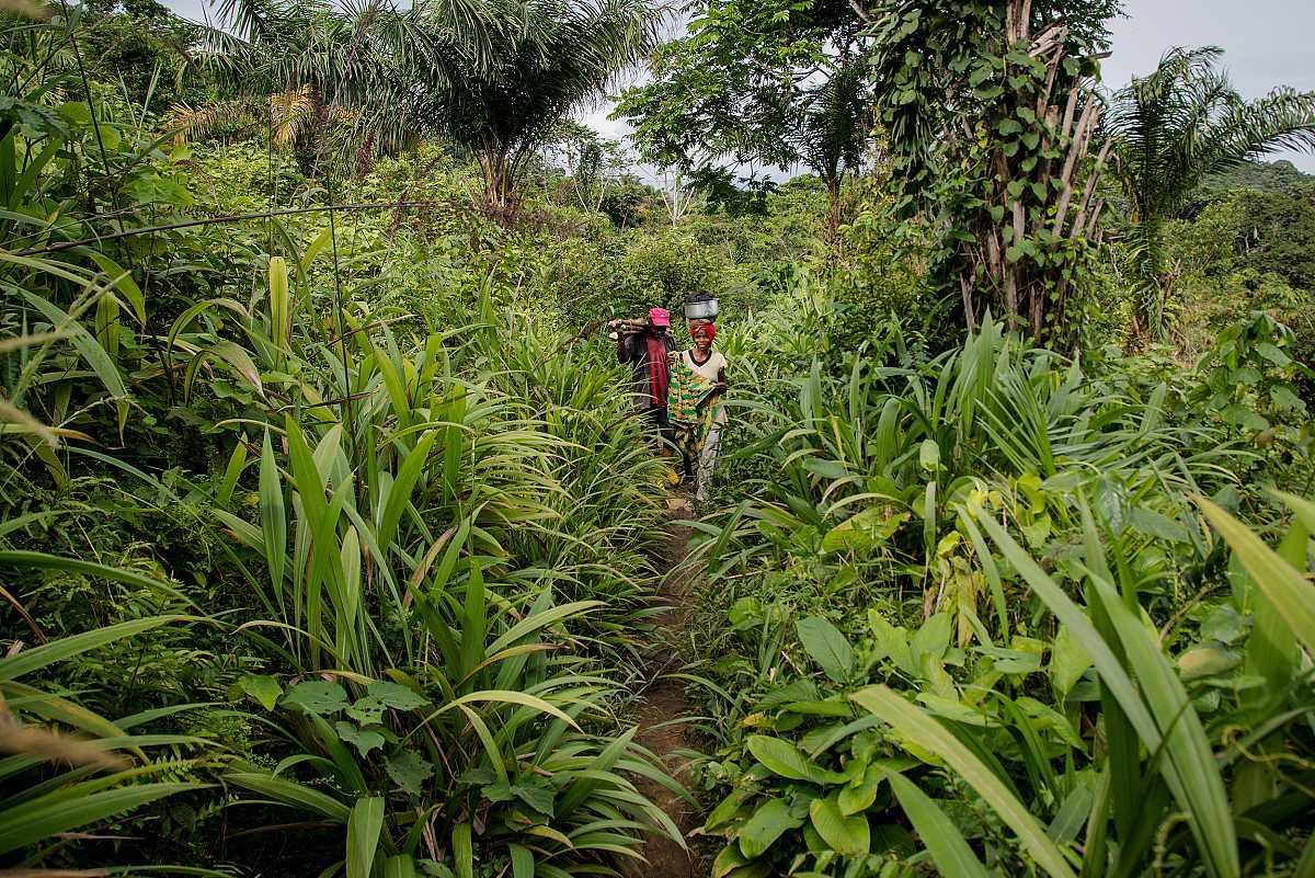 Dos personas avanzan por un pequeño sendero en medio de la selva, rodeados completamente de vegetación.