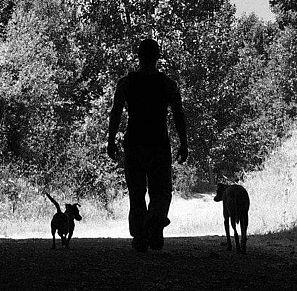 Imagen de la página de Facebook de Isra Pérez con sus dos perras, Lana y Wilma.