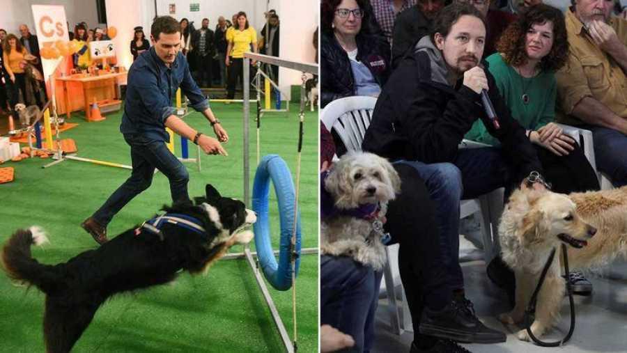 Pablo Iglesias y Albert Rivera participan en actos sobre bienestar animal. EFE