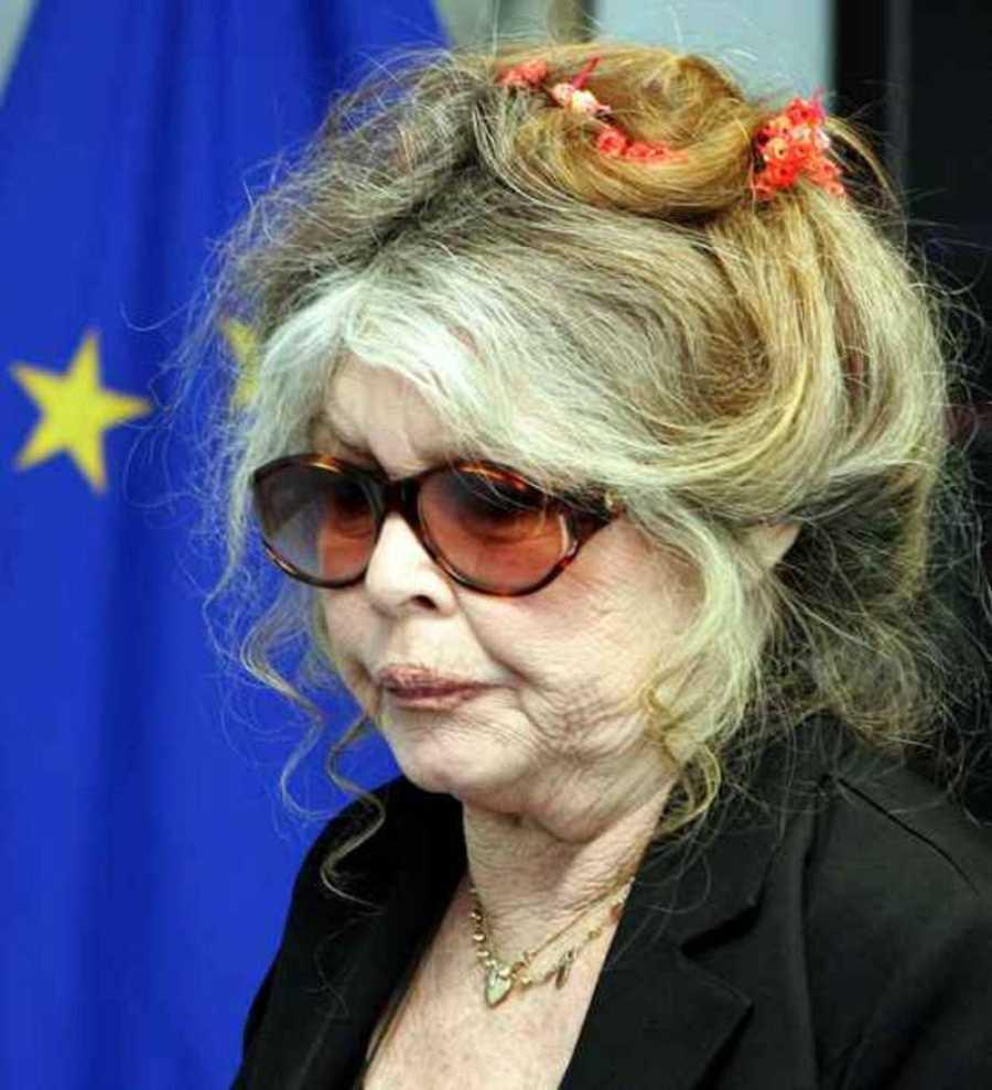 La actriz Brigitte Bardot, candidata en las elecciones europeas.