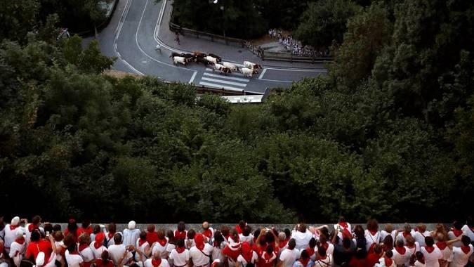 Encierrillo con los toros que participarán en el encierro del día siguiente