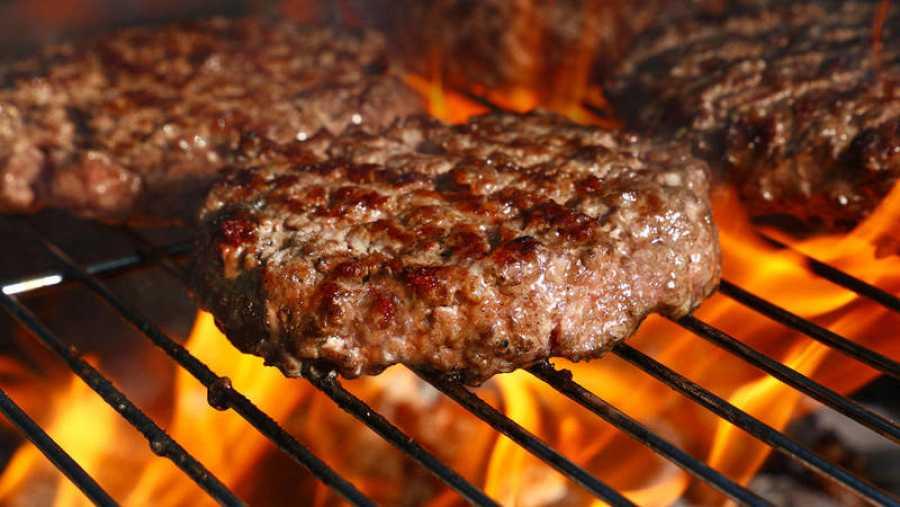 La carne natural es un conglomerado de varios elementos, como músculo, sangre, grasa onervios.