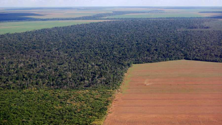 El récord deincendios hacoincidido conel incremento de la deforestación asociadoa lapolíticade Bolsonaro.
