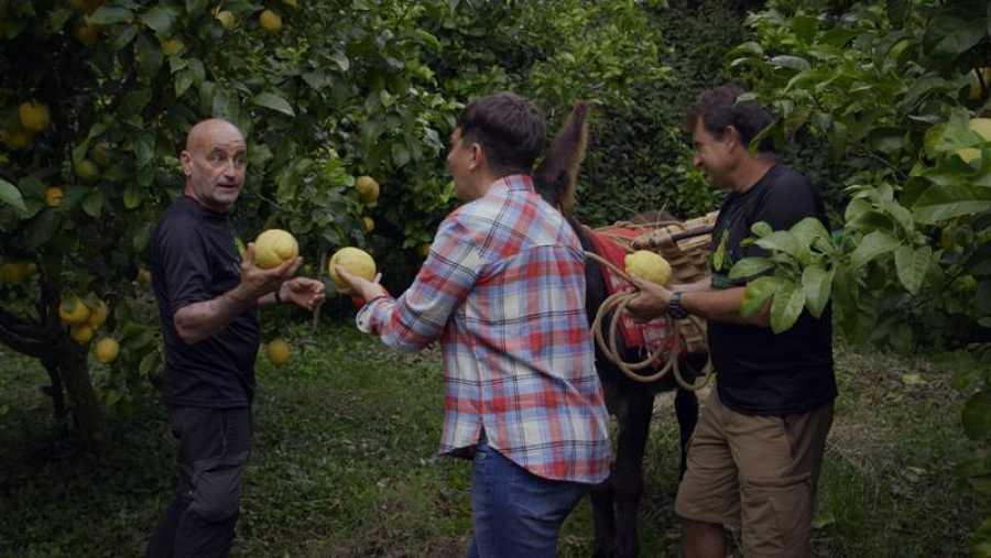 Eva Hache probará los limones más peculiares del país
