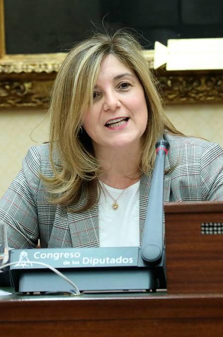 La diputada Pilar Cancela, en la Comisión de Igualdad.