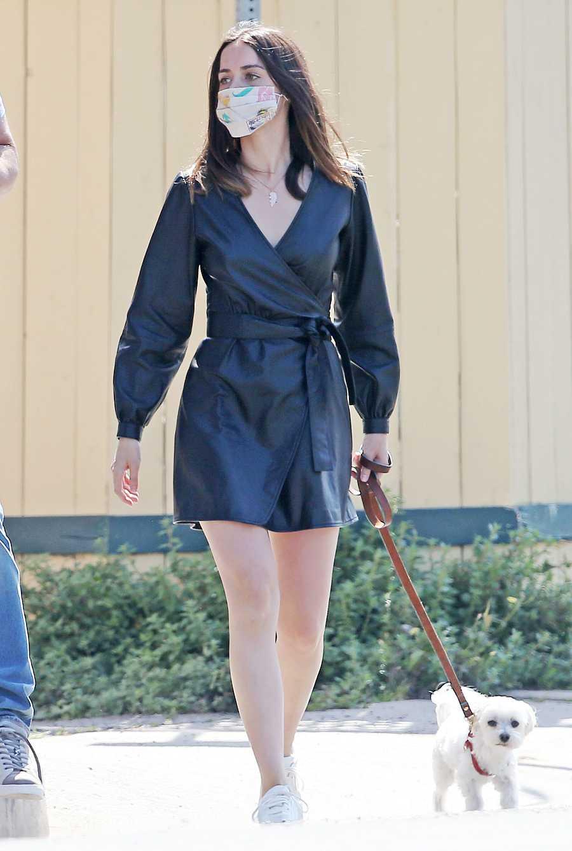 Ana de Armas pasea a su perro en Los Ángeles