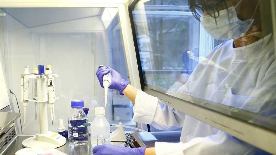 España cuenta con varios proyectos de importante calado científico, aún en fase preclínica.
