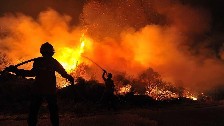 En los últimos meses, el mundo ha sufrido eventos catastróficos, como incendios devastadores o ahora la pandemia de COVID-19.