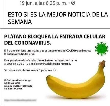 Bulo del plátano y el falso bloqueo celular contra el coronavirus.