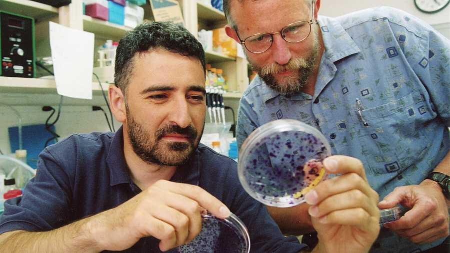 Charles M. Rice, galardonado con el premio Nobel por la investigación que ha contribuido a la cura de la hepatitis C