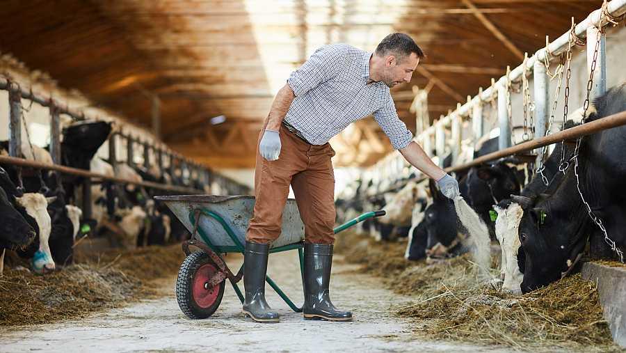 Algunas asociaciones consideran que el nuevo tratado desprotege a los pequeños productores del sector agrícola