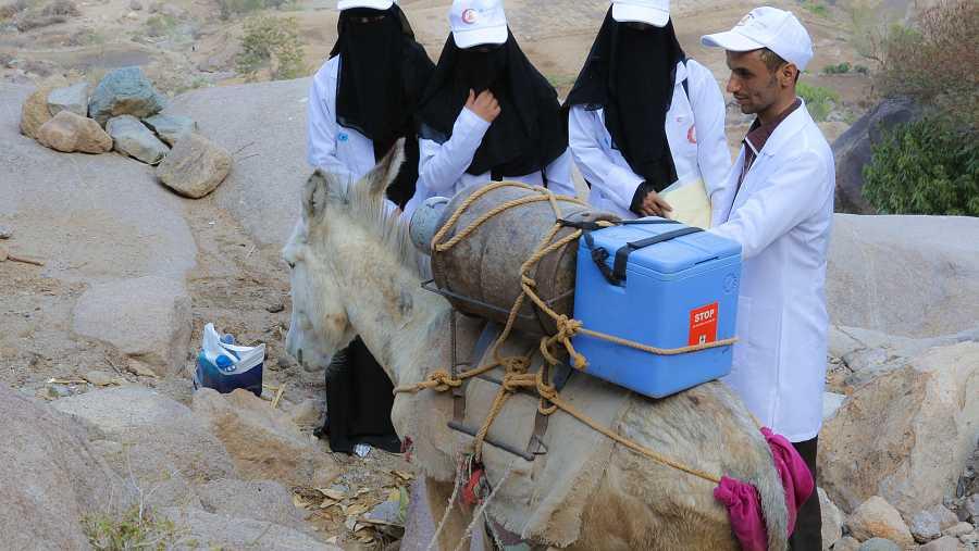 No todos los miembros del equipo de vacunadores son humanos, entre ellos también hay un burro.