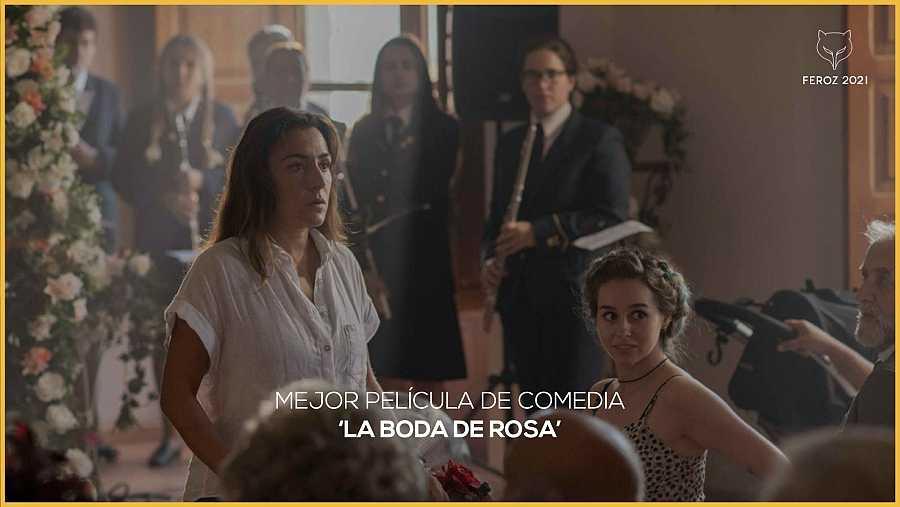'La boda de Rosa', mejor comedia