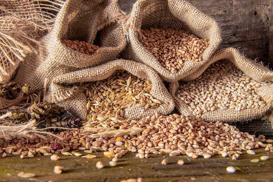 Sacos de distintos cereales: avena, trigo...