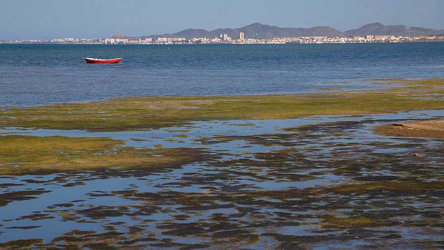 Orilla del Mar Menor