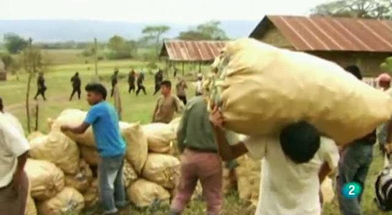 Los biocombustibles, enemigos de los indígenas de Guatemala