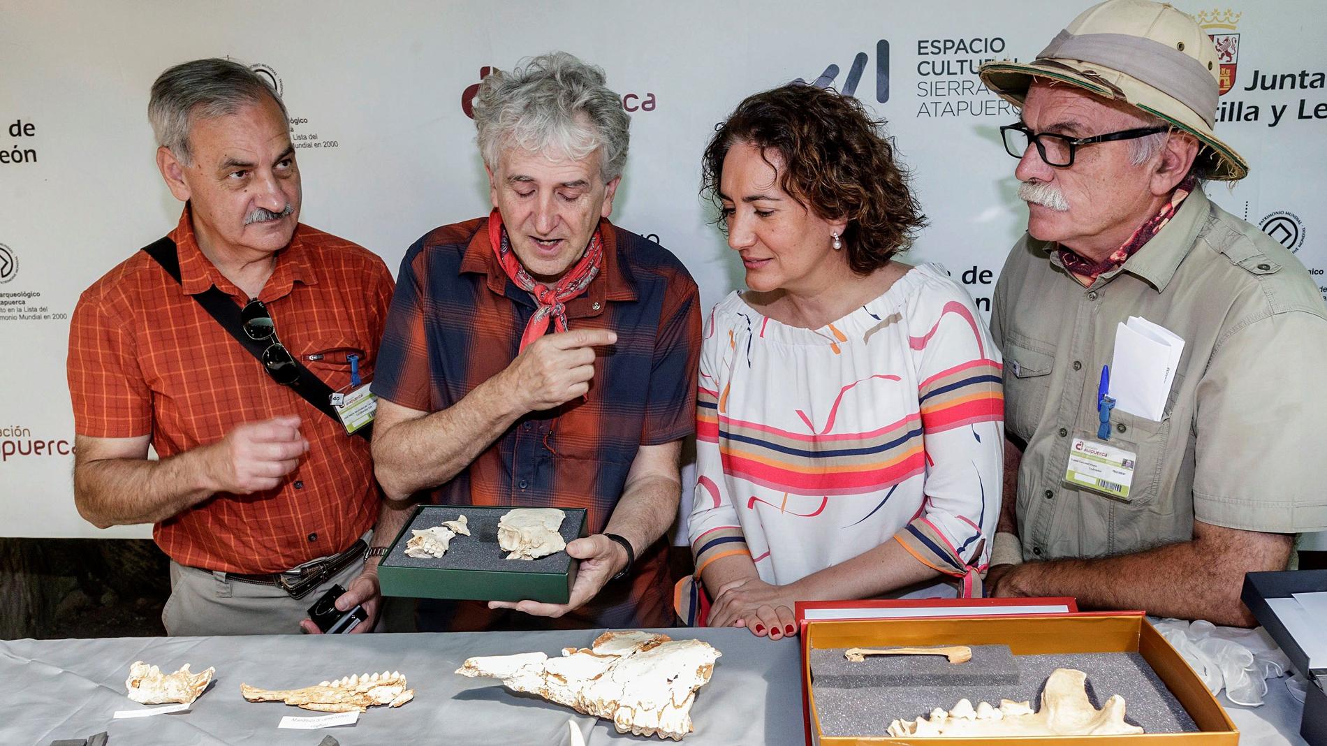 El hallazgo más importante de 2018 en Atapuerca, restos de una adolescente de hace 300.000 años