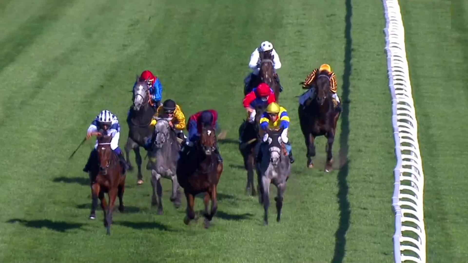 Circuito nal. carreras de caballos (Hipódromo La Zarzuela)
