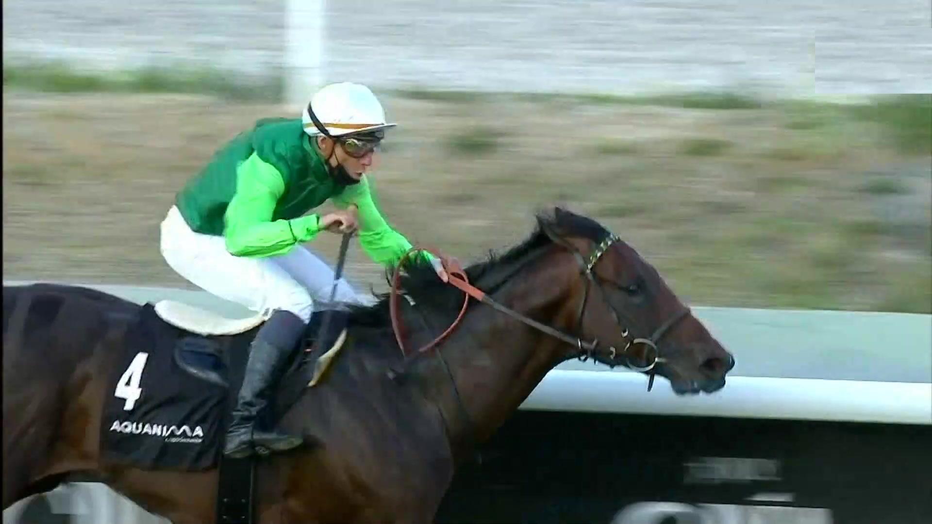 Circuito nacional de carreras de caballos (Hip.La Zarzuela)