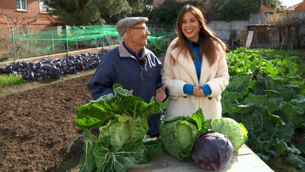 Aquí la Tierra - La huerta de Heliodoro: verduras de invierno