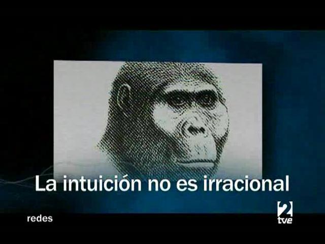 Redes - La intuición no es irracional